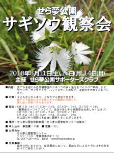 sagisou-kansatsukai20170811-14