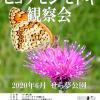modoki-kansatsu2020june