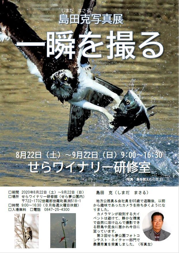 shimada-photo20200822-0922