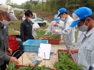 幼虫を引き取りに来た世羅高校農業経営科3年生2021年4月23日